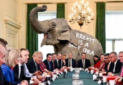 The elephant in the cabinet!